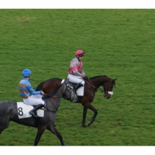 ARISTO DES MOTTES: first chase at Auteuil