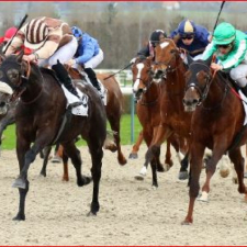 Easy win of KING NONANTAIS