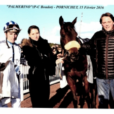 1st win on the flat for PALMERINO…