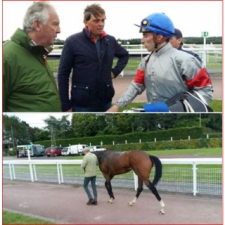 DONASLAND: a good filly