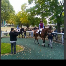 Good first time out at Auteuil…